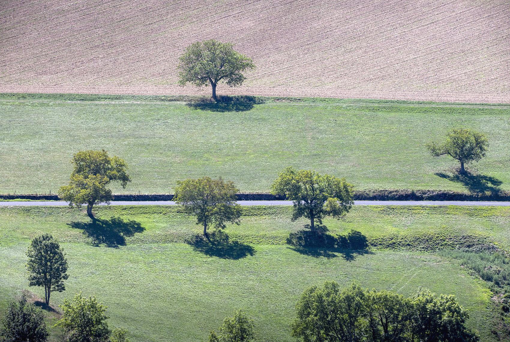 Fotograaf Auvergne